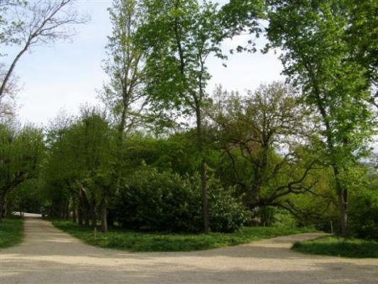Le Mée-sur-Seine parc Chapu