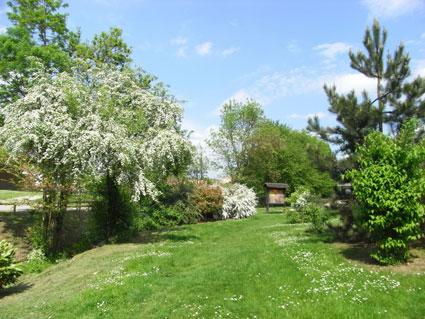 Montévrain (Chessy) : parc des Frênes (et du Bicheret)