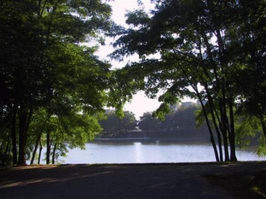 Lognes parc du Mandinet