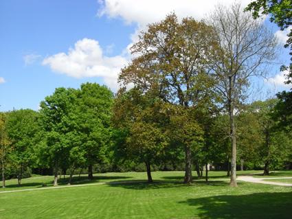 Montgé-en-Goële domaine St. Thibault