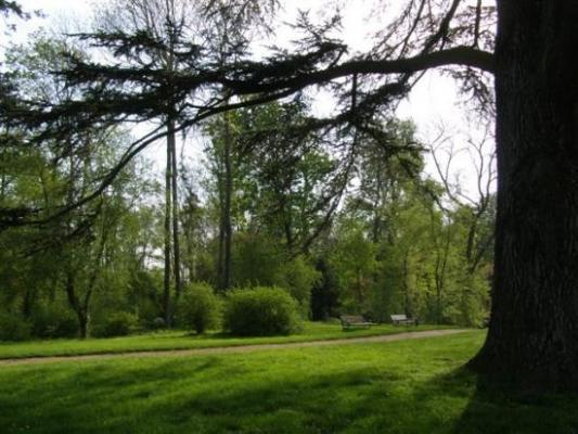 Savigny-le-Temple  la Grange - la Prévôté