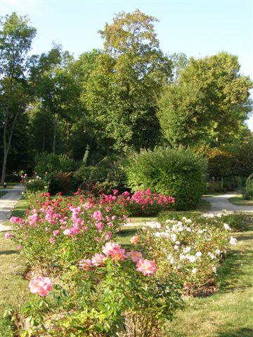 Varennes s/Seine parc de la Sauvagerie