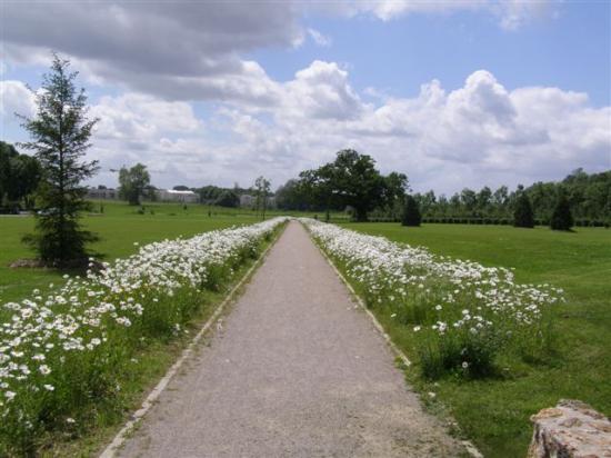 Chessy (Montévrain) parc du Bicheret