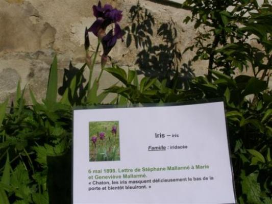 Vulaines-sur-Seine  jardin du musée Mallarmé