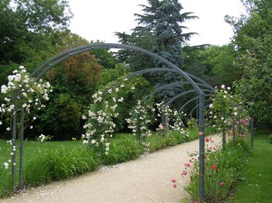 Brie-Comte-Robert jardin des Bienfaites