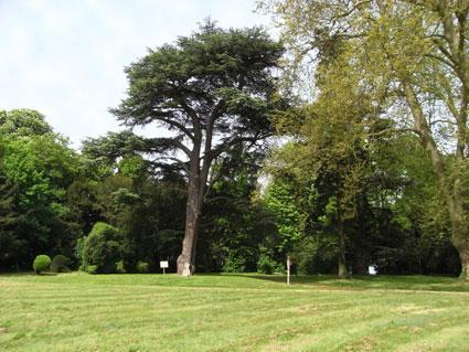 Ferrières-en-Brie parc du château