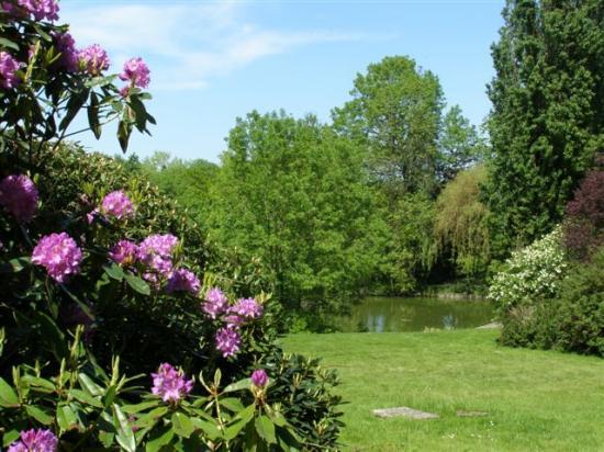 Dammartin-en-Goële : parc de la Corbie