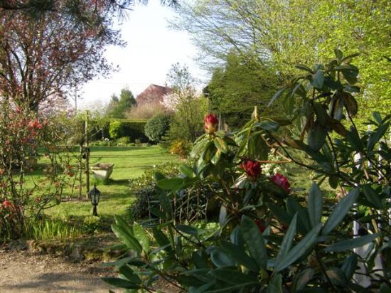 Saint-Denis-les-Rebais : jardin de Valérie