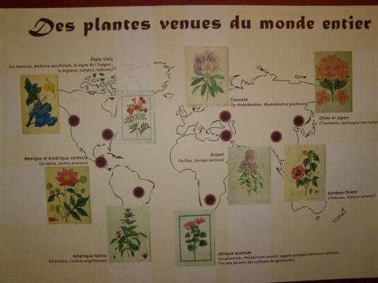 Exposition au musée de St. Cyr-sur-Morin