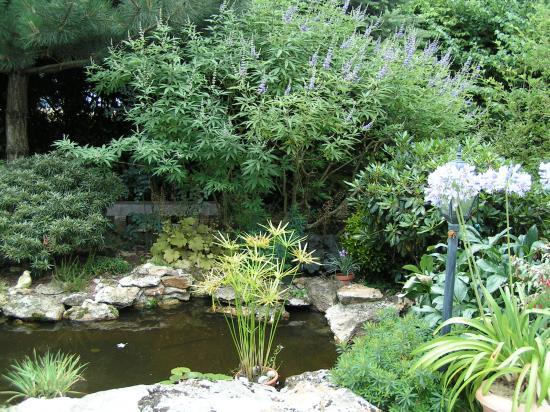 Le jardin de val rie st denis l s rebais - Bassin rectangulaire de jardin saint denis ...