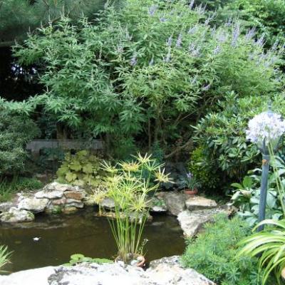 Le jardin de Valérie à St. Denis-lès-Rebais