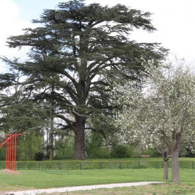 Savigny-le-Temple : domaine de la Grange - la Prévôté