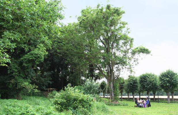 Poigny CJ 2012