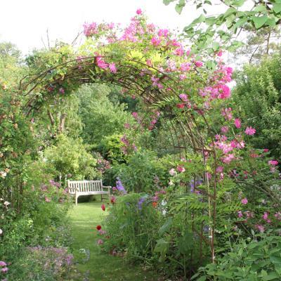 Montarlot : la vie en roses